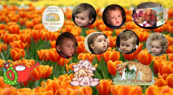Portada laranxas